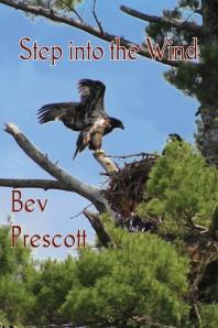Step into the Wind by Bev Prescott