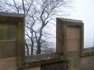 Bolsover Castle: outer wall and tree in the misttree
