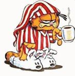 garfield hungover