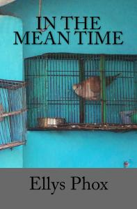 In_the_Mean_Time_Cover_for_Kindle