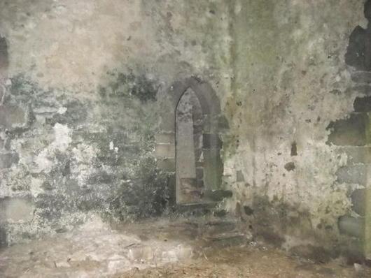 Ghost-at-Leap-Castle_photo_medium