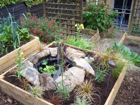 Back Garden 230716 (7).JPG