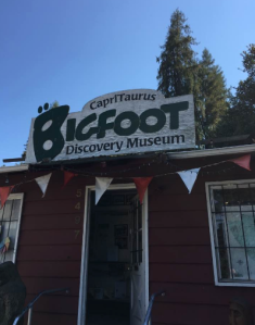 This is a thing. Bigfoot Discovery Museum, Felton, CA
