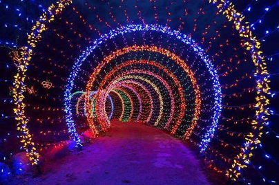 holiday-lights-tunnel