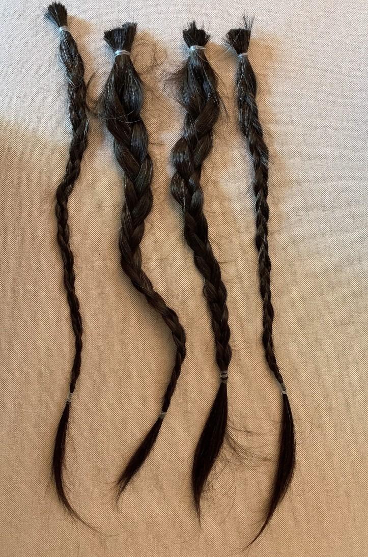 braids (2)