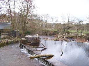 River Derwent at Mill 14032020 (3)